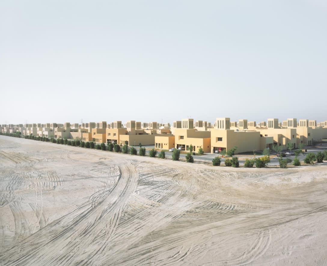 حيوانات هائمة ومساحات منسية.. هل هذا هو مستقبل الإمارات؟