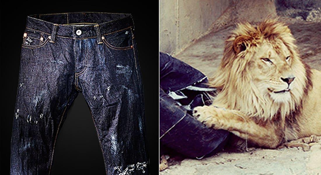 """أحدث صيحات الموضة: جينز من صناعة """"حيوانات الحديقة""""  بسعر 1500 دولار للبنطال"""
