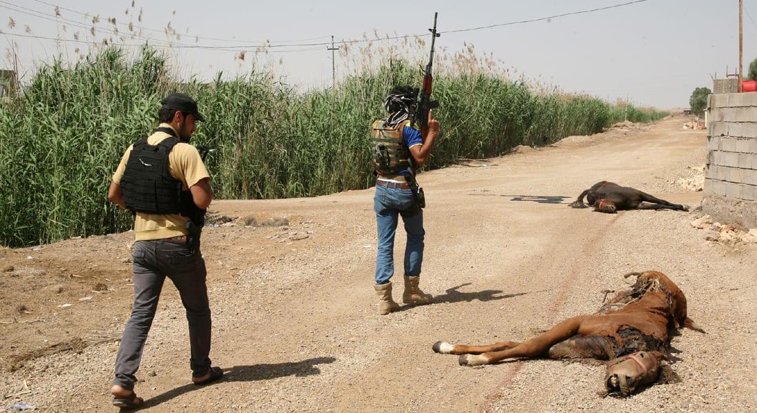 """الشرطة العراقية : """"إبطال مفعول"""" حيوانات مفخخة .. أسلوب جديد للجماعات المسلحة"""