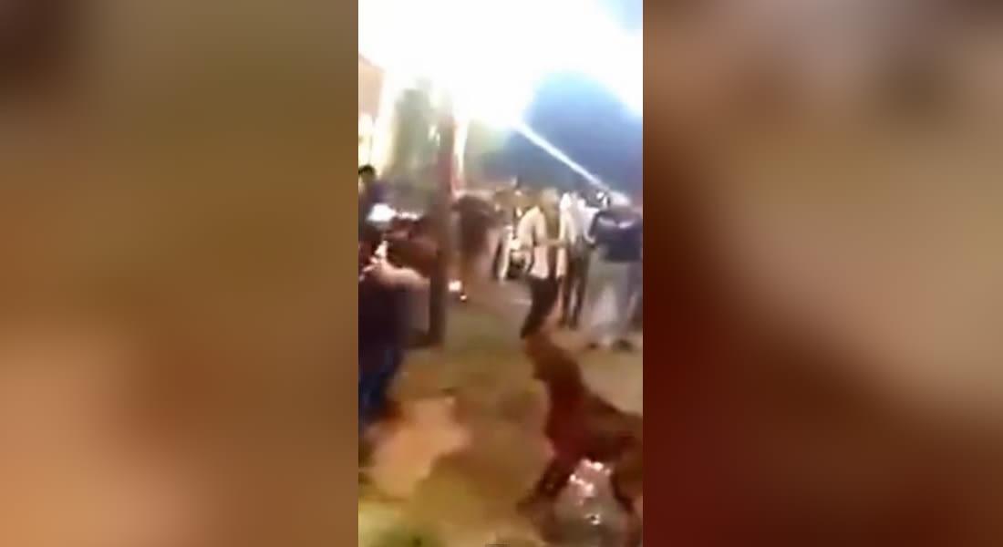 """محكمة مصرية تقضي بحبس 4 متهمين في واقعة تعذيب وقتل """"كلب الهرم"""" 3 سنوات"""