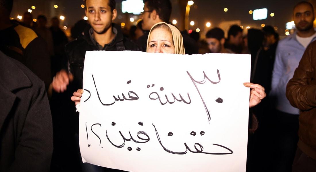 فاروق حلمي يكتب لـCNN: محاربة الفساد بمصر أولوية قومية تسبق ما عداها