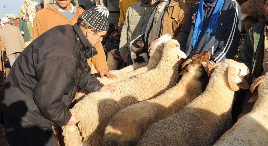 مواطنون يعتدون على رجلٍ حتى الموت بسبب اتهامه بالسرقة في سوق مغربي