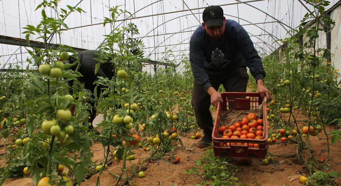 مستثمرون فلسطينيون ينتقدون تواضع التبادل التجاري مع الأردن والخليج مقارنة بإسرائيل