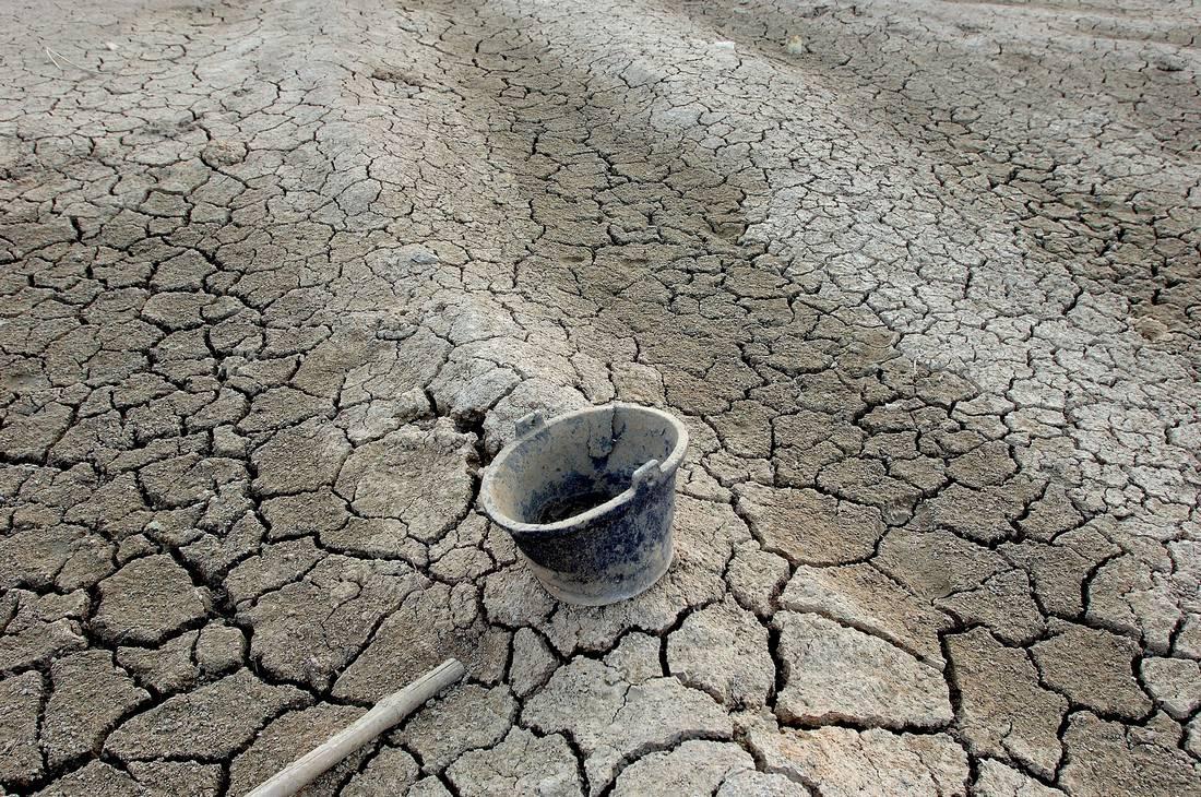 دراسة: الدول العربية ستستورد مستقبلًا جلّ حاجياتها الغذائية بسبب تقلبات المناخ وتزايد السكان