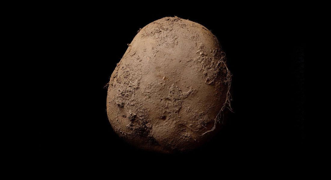 هل تصدق؟ صورة البطاطا هذه بيعت مقابل 1.08 مليون دولار!