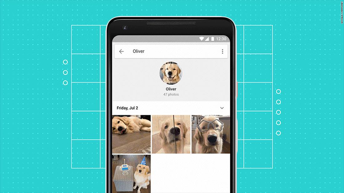 """تطبيق """"صور غوغل"""" يتعرف على حيواناتكم الأليفة"""