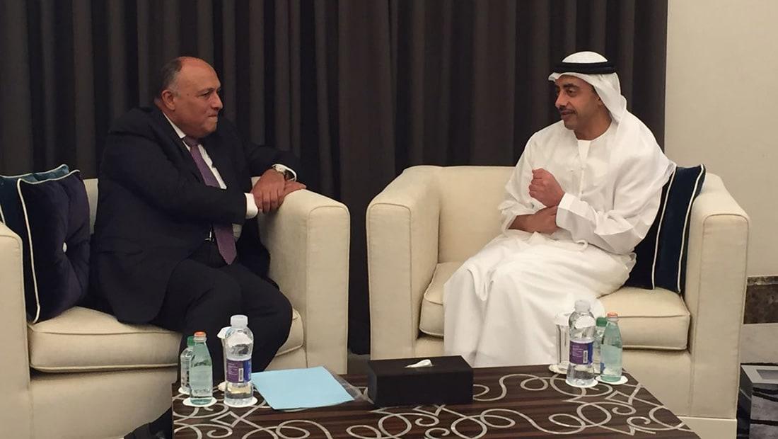 """وزيرا خارجية الإمارات ومصر يبحثان سبل مواجهة """"التدخلات الخارجية"""""""