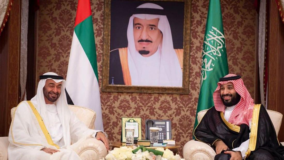 قرقاش عن مجلس التنسيق السعودي الإماراتي: يحمل في طياته بشرى للمنطقة