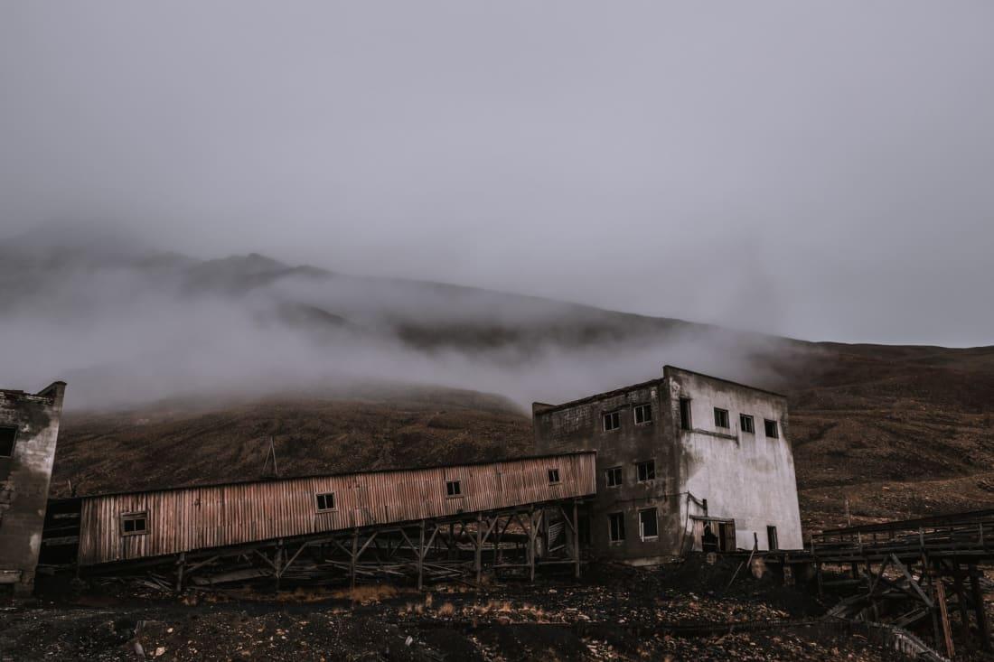 مصور يلتقط لمدينة شبه مهجورة سكانها الآن دبب قطبية