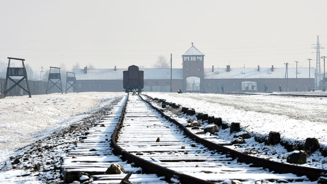 بالفيديو.. هل تم العثور على الكنز النازي المفقود؟