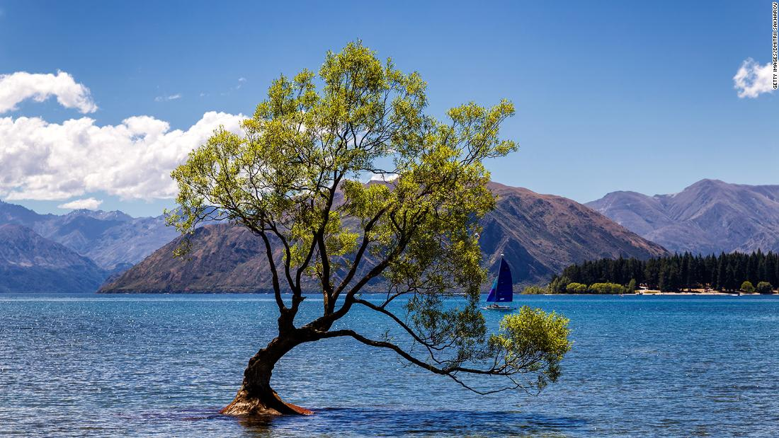 شركة طيران نيوزيلندا تكشف عن حجرات نوم لركاب الدرجة الاقتصادية