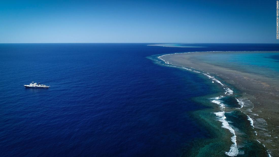 اكتشاف شعاب مرجانية في أستراليا أطول من مبنى إمباير ستيت