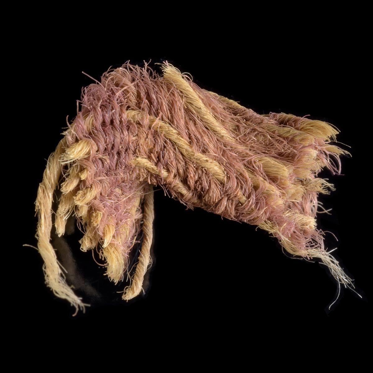 كانت أغلى من الذهب.. اكتشاف صبغة أرجوانية تعود إلى عهد الملك داوود في إسرائيل
