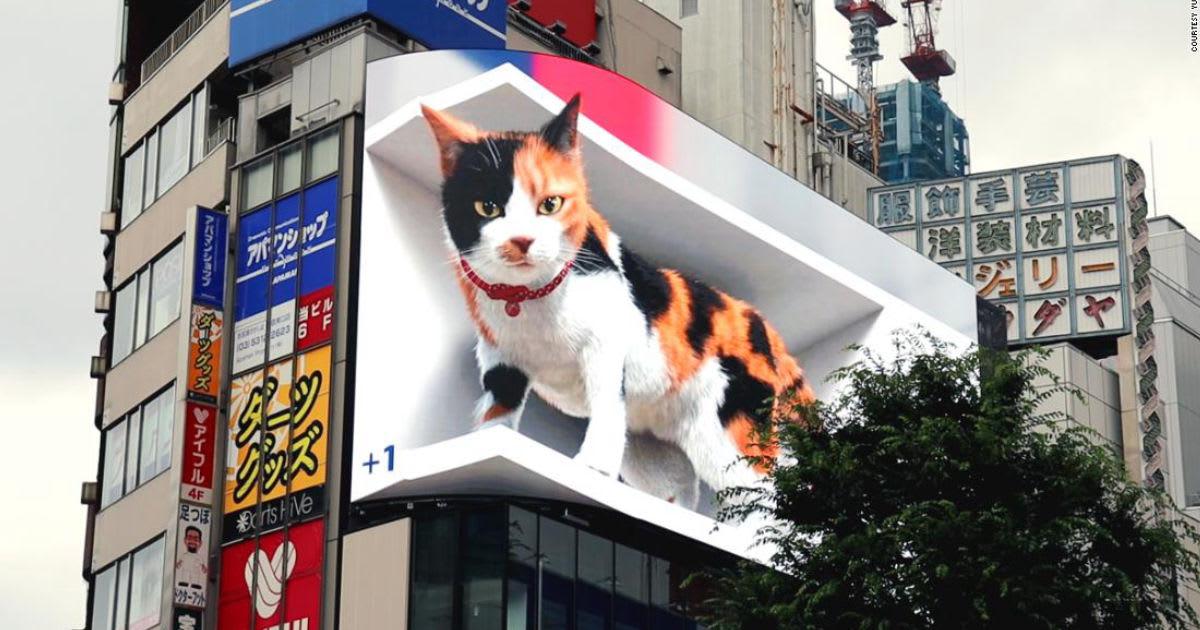 تبدو بالغة الواقعية.. قطة عملاقة ثلاثية الأبعاد تستحوذ على إحدى أكبر اللوحات الإعلانية في طوكيو