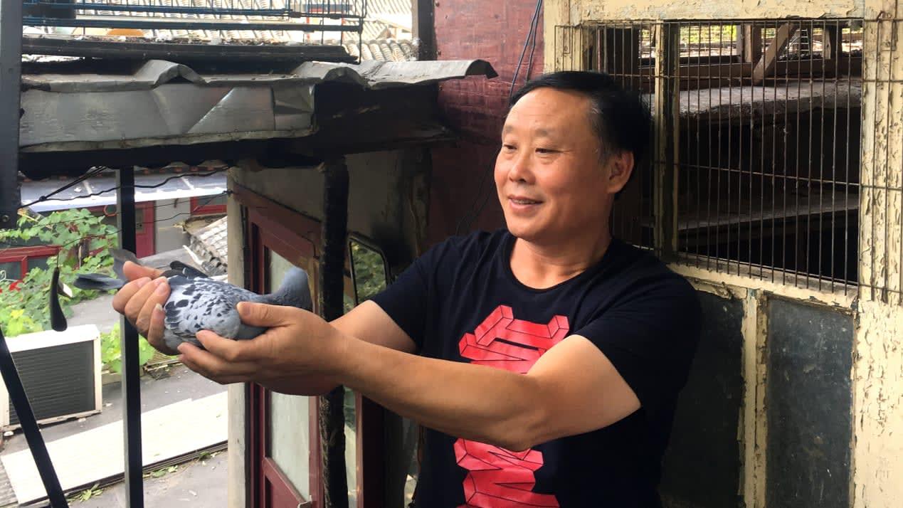 """من داخل سباق الحمام الشرس والرائع في الصين.. إليك تفاصيل هذه """"الرياضة"""""""