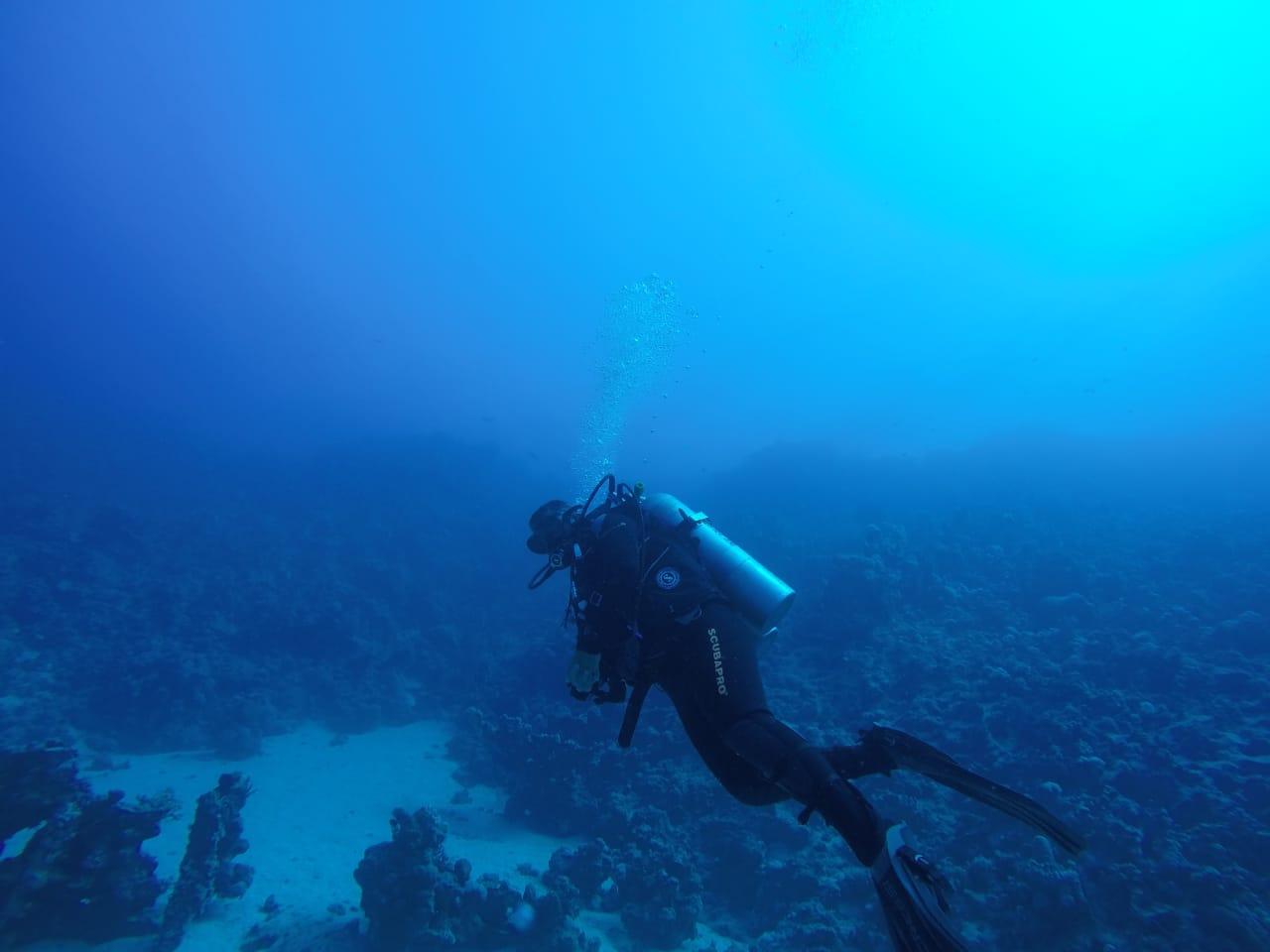 الكشف عن مقدمة سفينة غارقة تعود للقرن الـ18 بأعماق البحر الأحمر في مصر