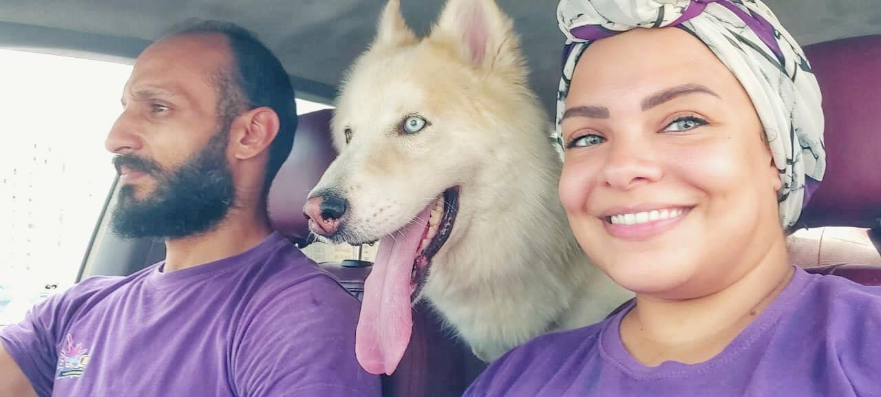 يتضمن زبائنهم الكلاب والثعابين.. ثنائي بمصر يطلقان خدمة تاكسي للحيوانات الأليفة