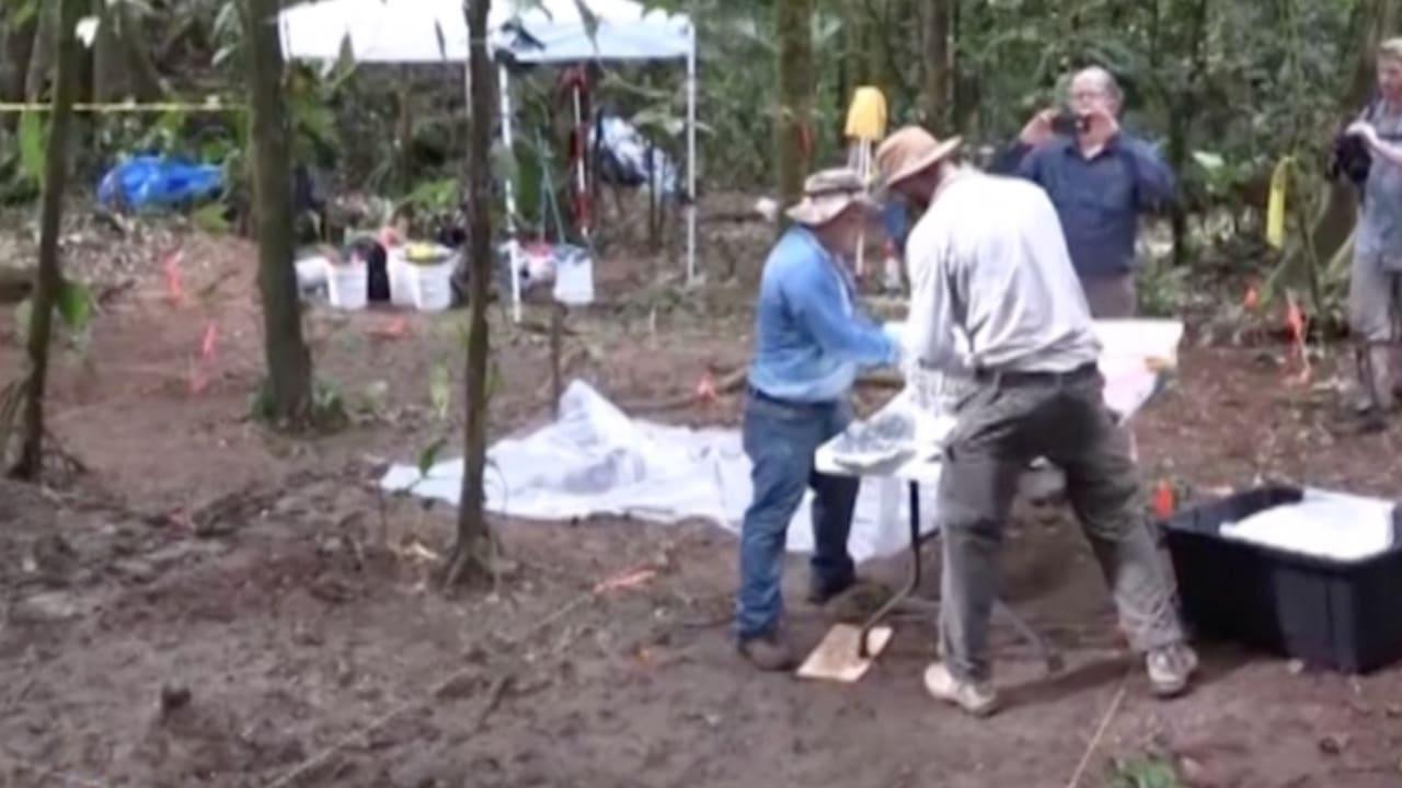 بالفيديو: العثور على أجزاء مدينة أثرية في هندوراس