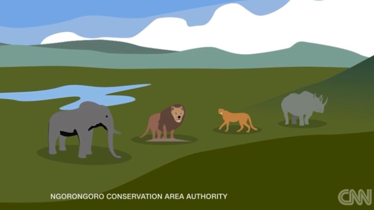 جولة سريعة في عجائب أفريقيا الطبيعية