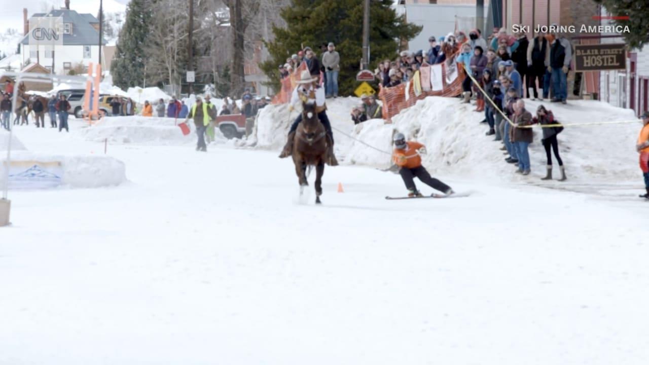 """حصان يقود متزلجا في وسط الميدان.. هذه هي رياضة """"سكيجورينغ"""""""