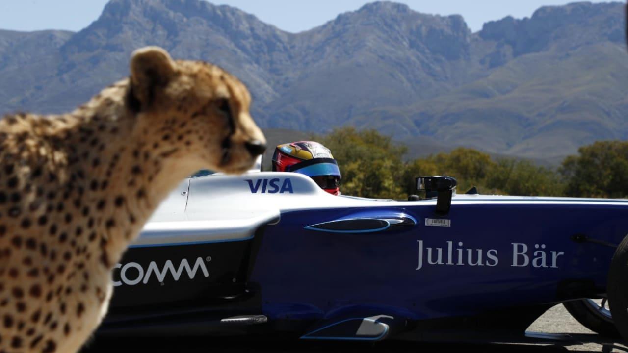 فهد يسابق سيارة فورمولا E.. فمن سيفوز؟