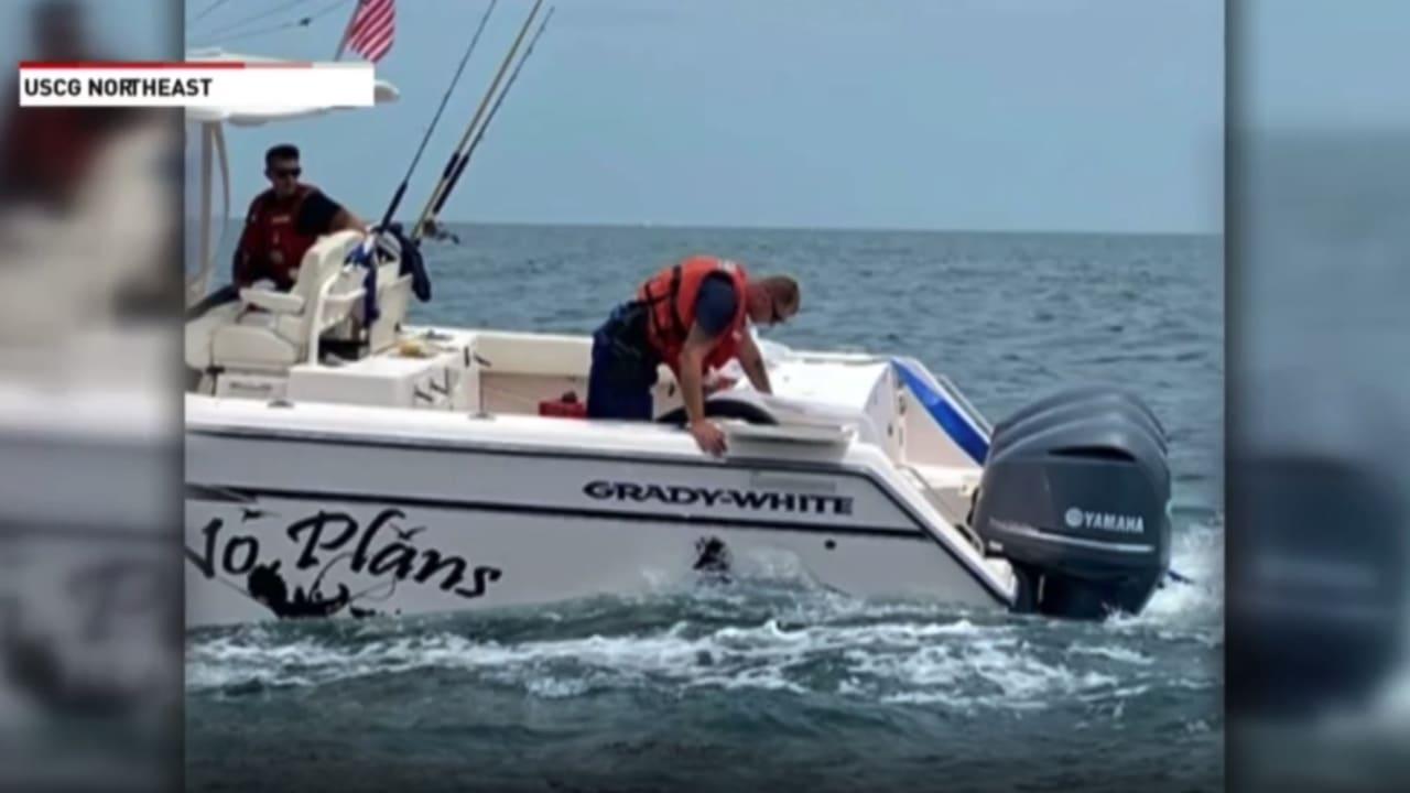 شاهد ما حدث عندما حاصرت ثلاثة حيتان عملاقة قاربا وسط البحر