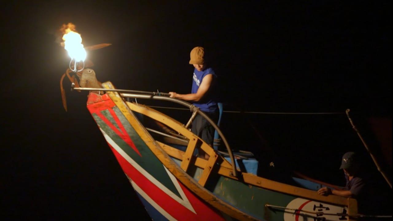 شاهد.. صيادون يصطادون أسماك السردين بالنار في تايوان