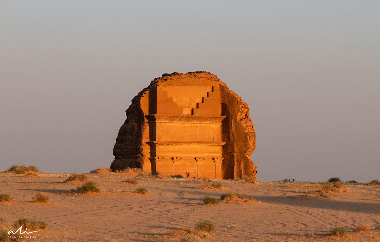 القصر الفريد في السعودية