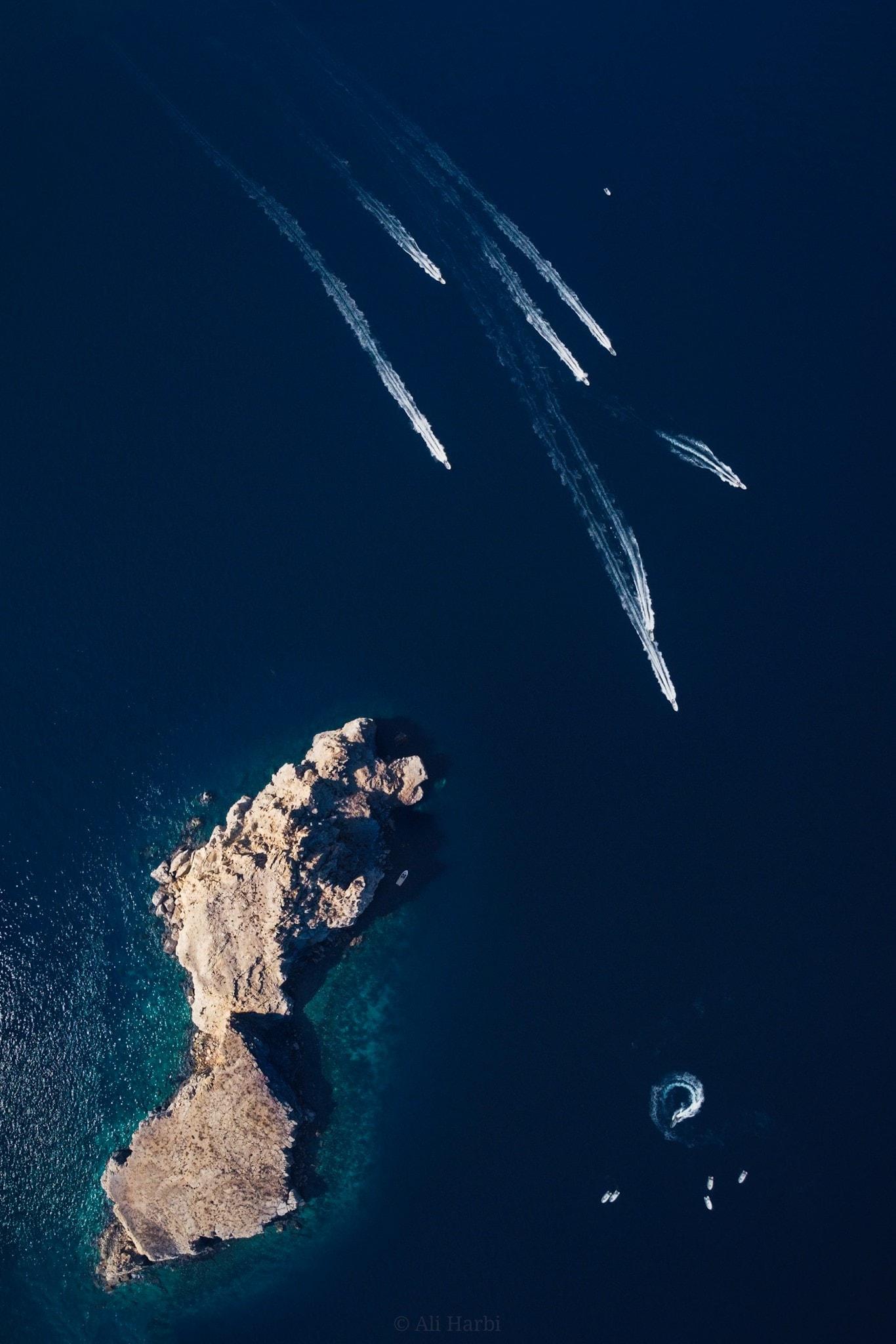 جزيرة سلامة وبناتها