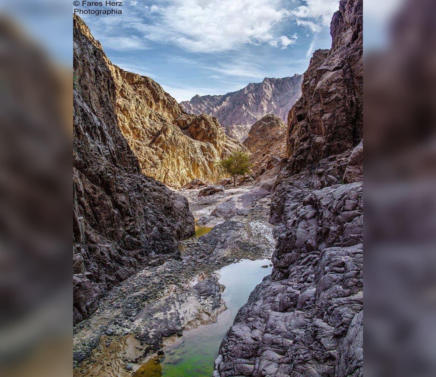 وادي الوشواشي