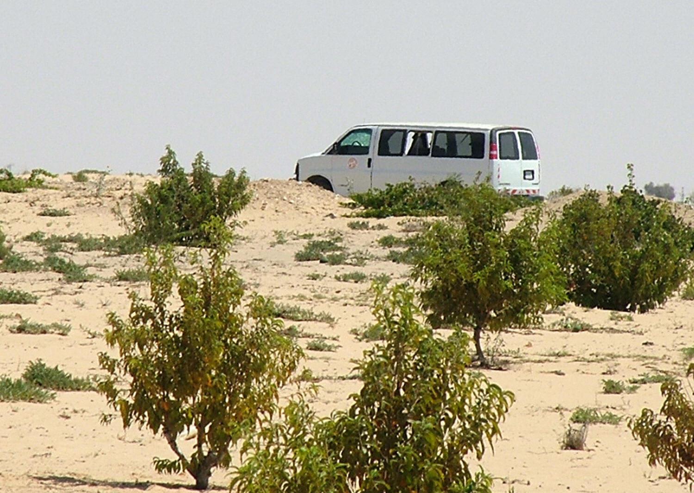 مقتل 7 من قوات حفظ السلام في سيناء بينهم 5 أمريكيين إثر تحطم مروحية