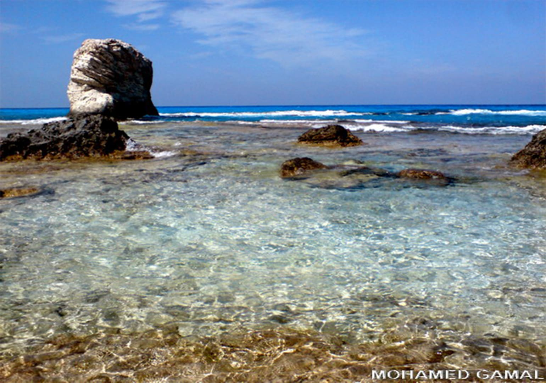 شاطئ الغرام