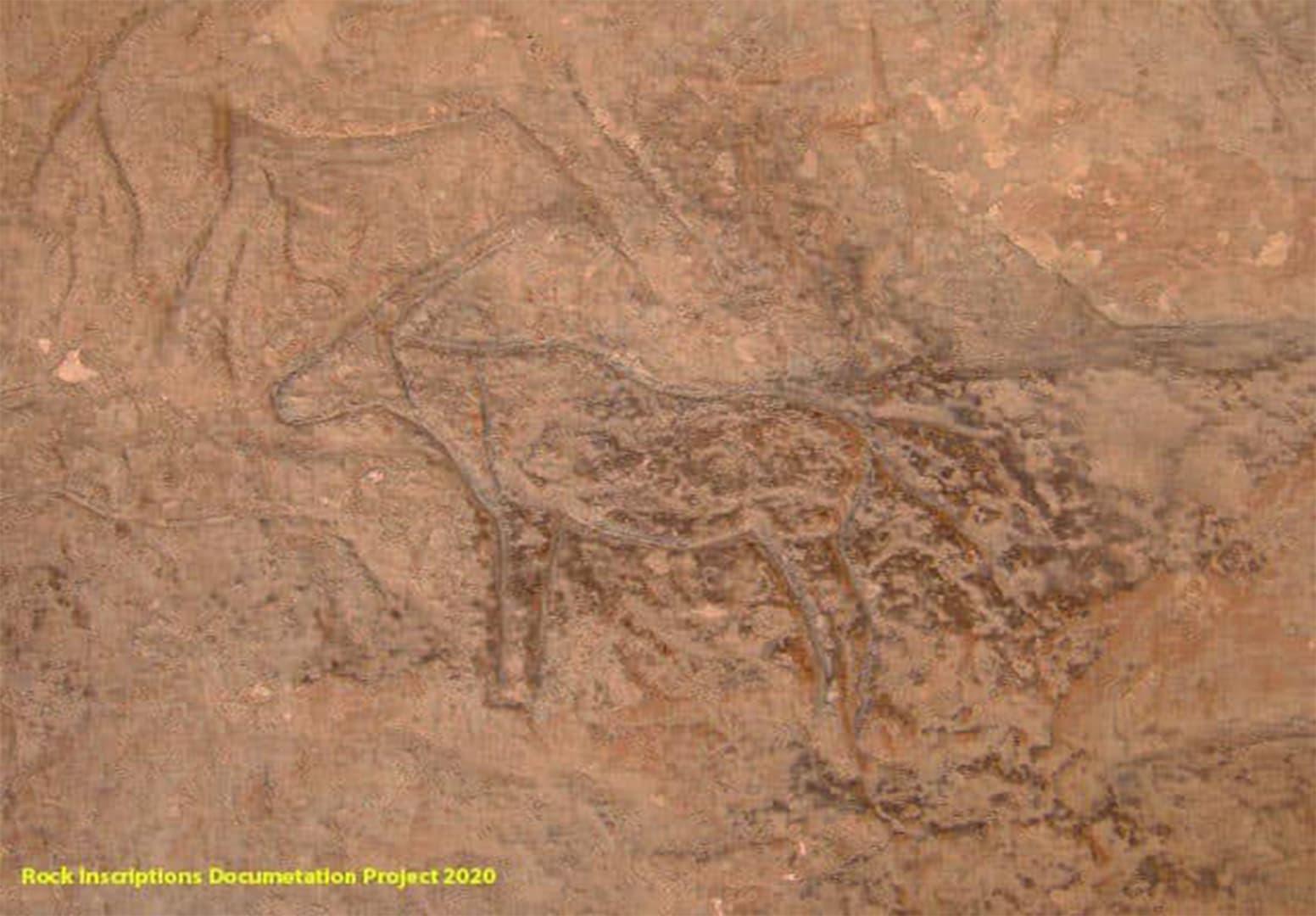 اكتشاف كهف أثري فريد يضم مناظر منحوتة متنوعة بمنطقة آثار شمال سيناء في مصر