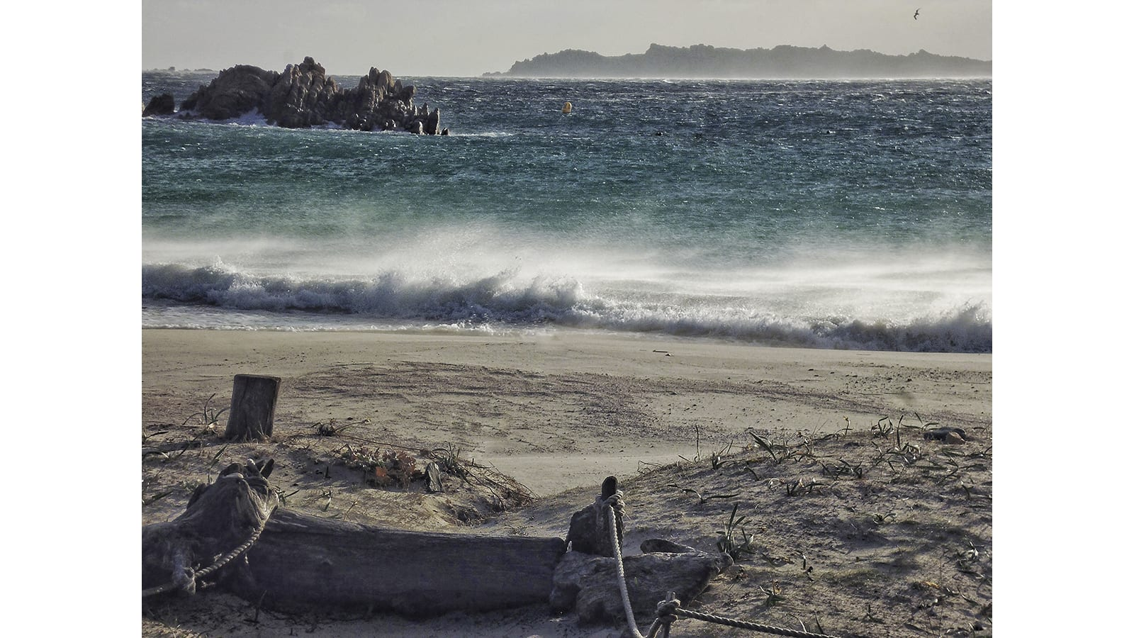 ناسك إيطالي يصف حياة العزلة على جزيرة بوديلي