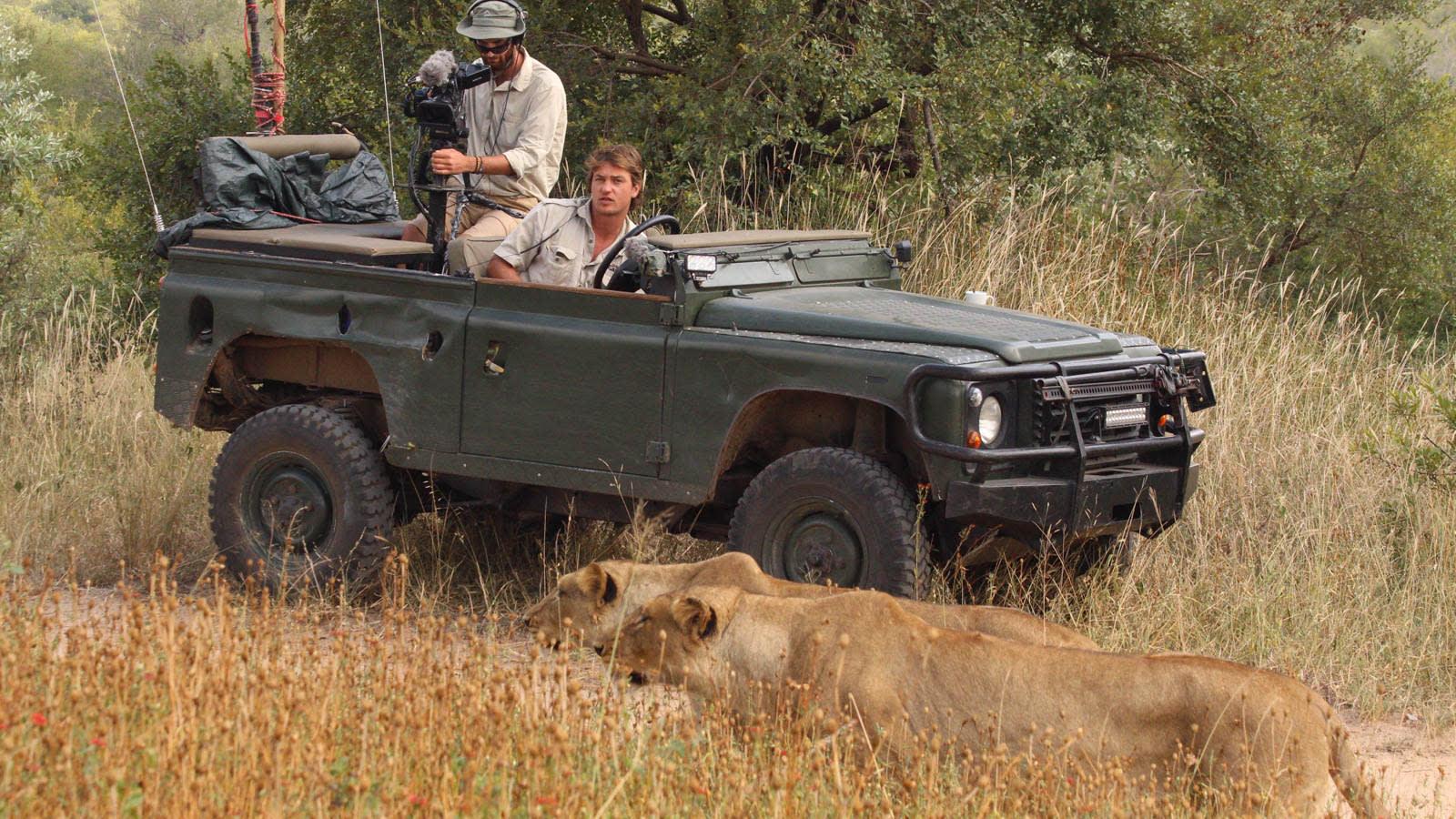 من جنوب أفريقيا إلى غرفة معيشتك.. كيف تحيي هذه المحمية رحلات السفاري بظل كورونا؟