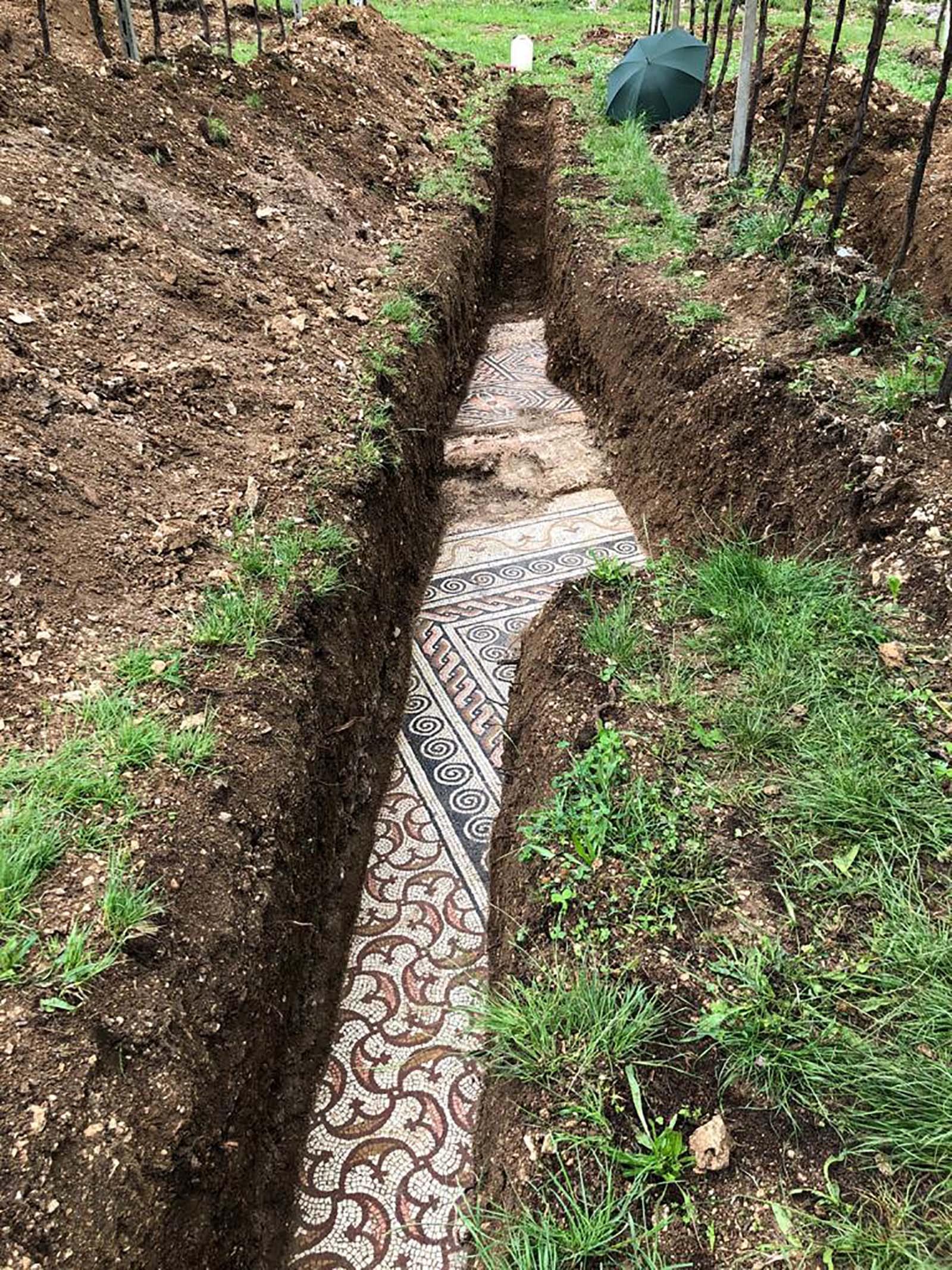 بعد عقود من المحاولات الفاشلة..اكتشاف أرضية فسيفساء رومانية قديمة بحالة مثالية من الحفظ في شمال إيطاليا