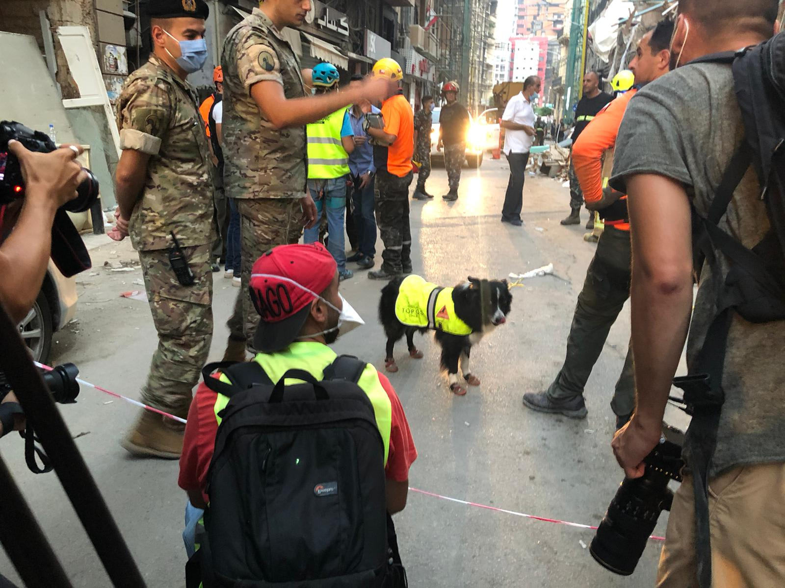 """بالصور.. تعرف على """"فلاش"""" بطل جهود البحث عن حياة تحت ركام بيروت"""