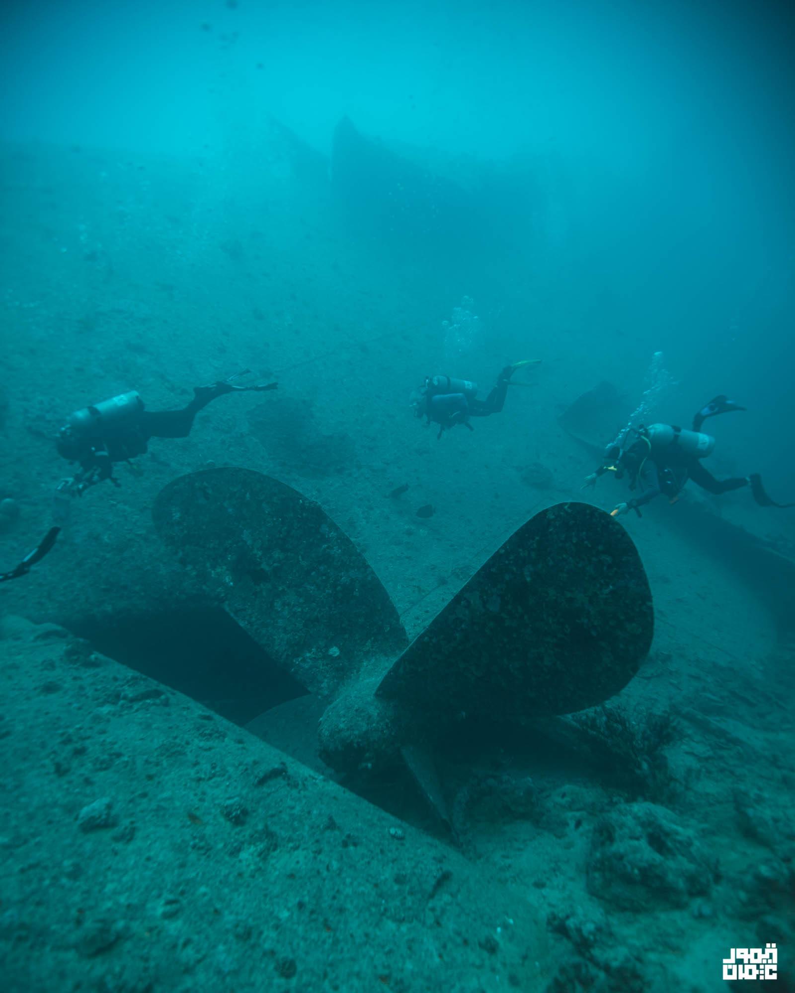 """سفينة """"إس إس ثيستليجورم"""""""