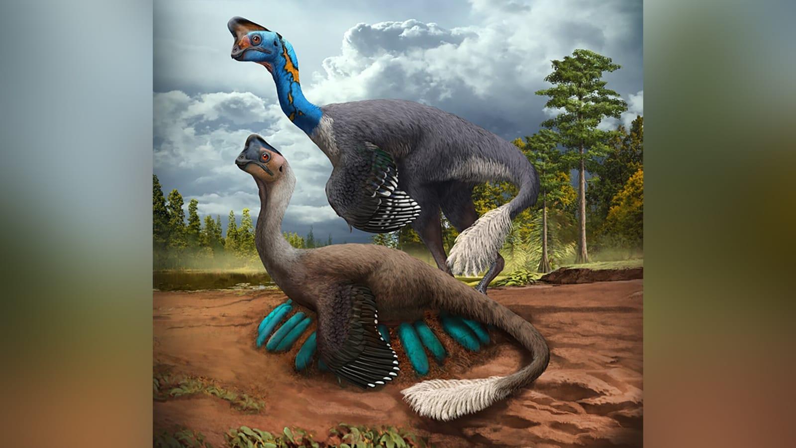 لأول مرة.. اكتشاف باحثون ديناصور محفوظ جالس على عش بيض بأجنة متحجرة