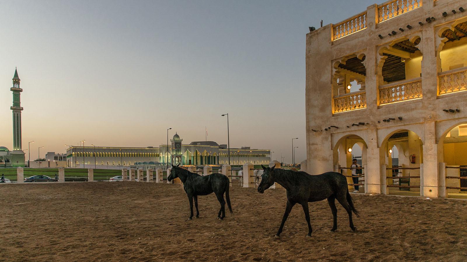 سوق واقف.. إليك 10 أشياء يجب رؤيتها والقيام بها بأقدم سوق في العاصمة القطرية