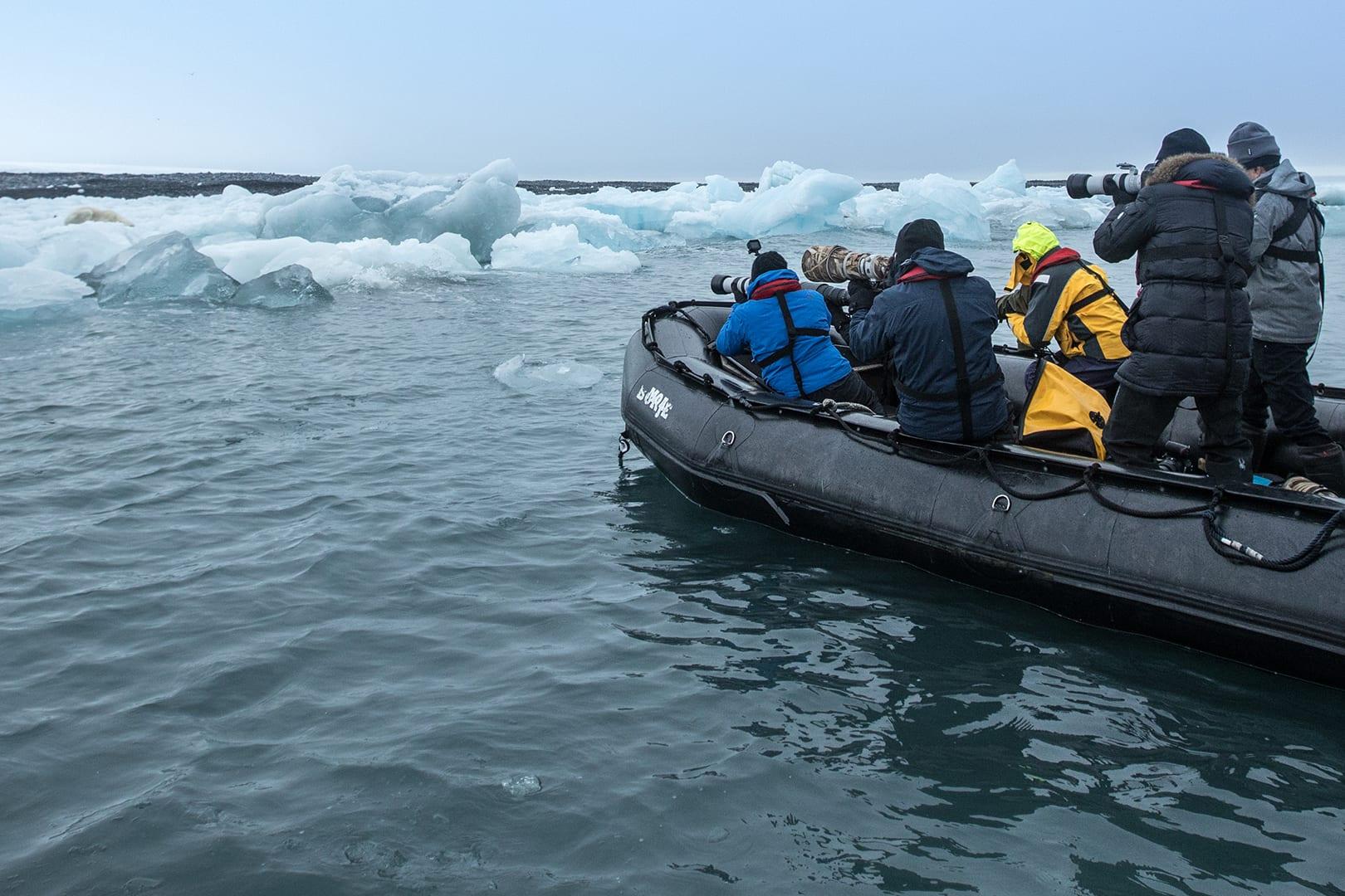 من عيون مصور كويتي.. أرخبيل قطبي يزيد فيها عدد الدببة عن سكانها