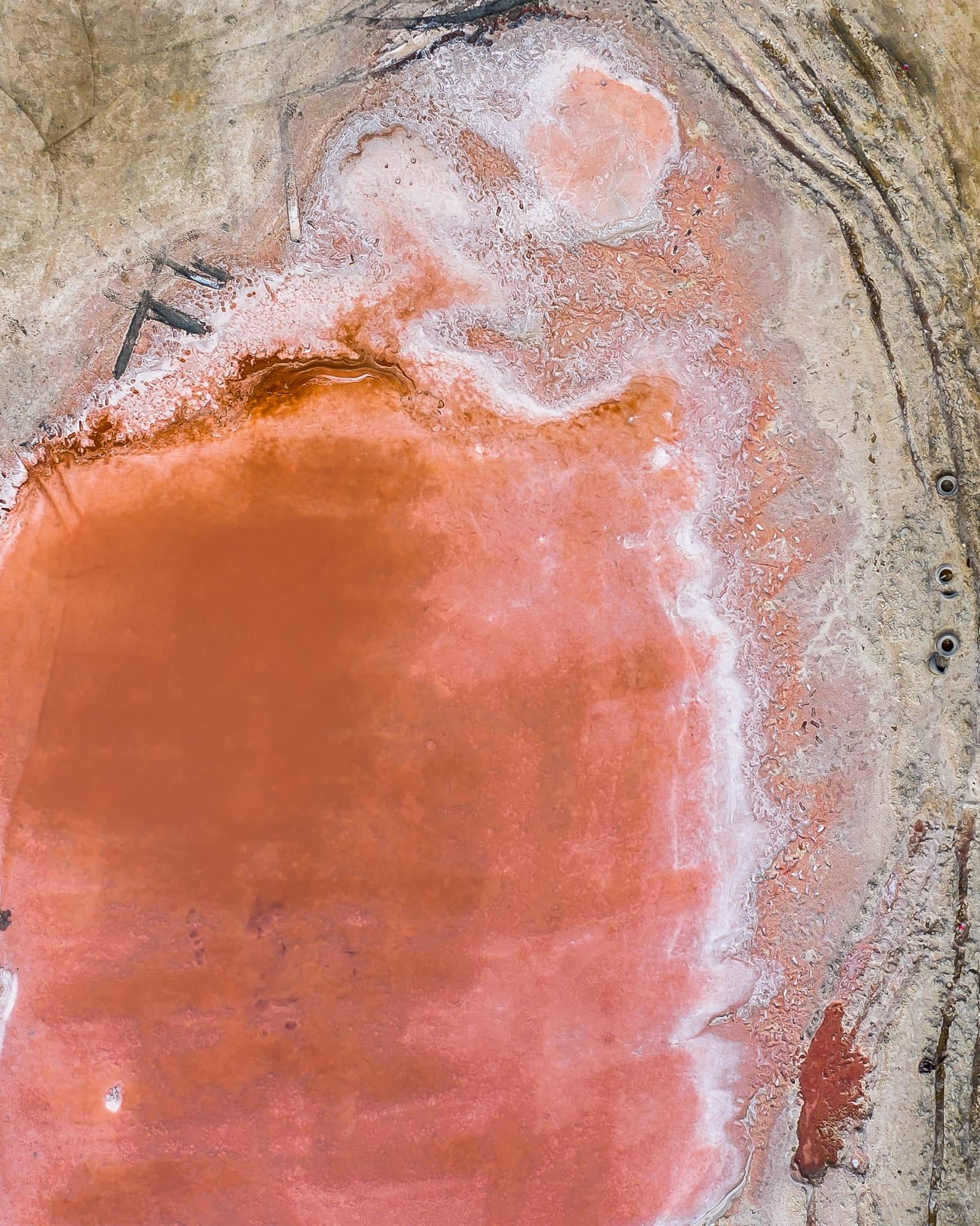 بالإمارات.. مصور يوثق بحيرة وردية طبيعية وهذا هو السبب وراء لونها
