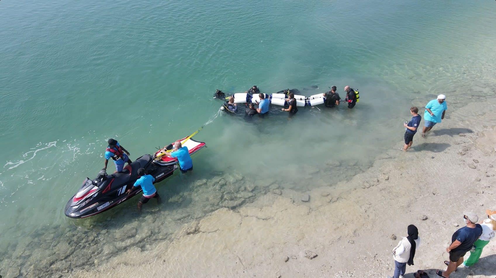 بعد أن ضل طريقه.. نجاح عملية إنقاذ قرش حوت في الإمارات بمهمة هي الأولى من نوعها