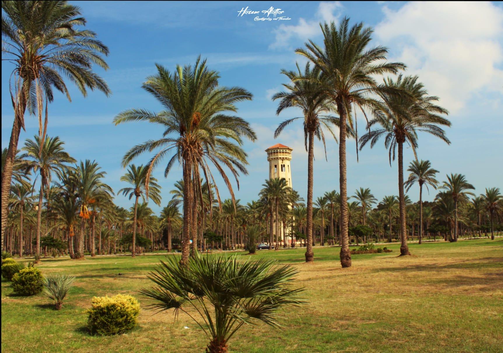 قصر المنتزه بالاسكندرية