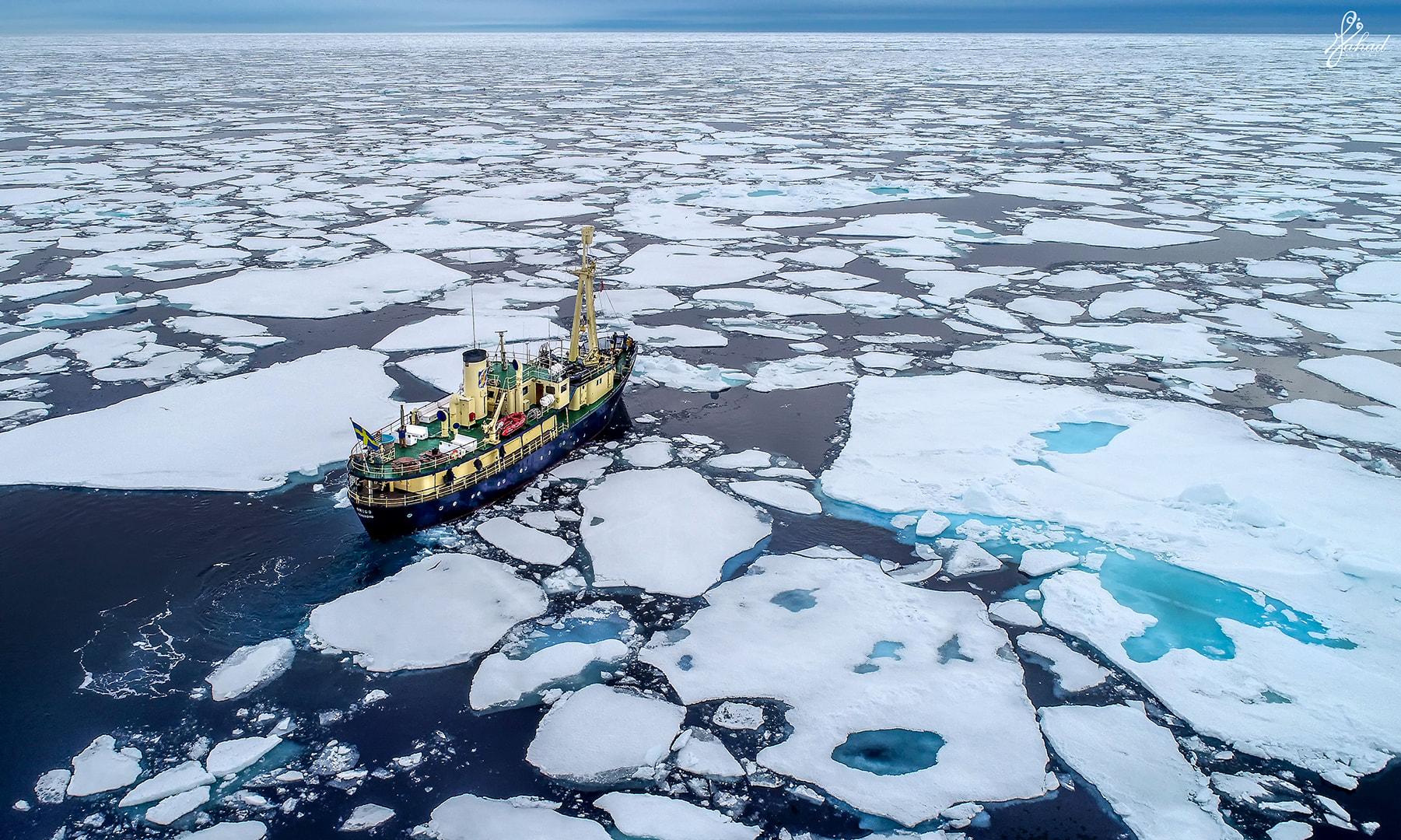 """""""تحت الصفر بين القطبين""""..كويتي يوثق أرخبيل قطبي تملؤه الدببة وحيث لا يمكن دفن الموتى"""