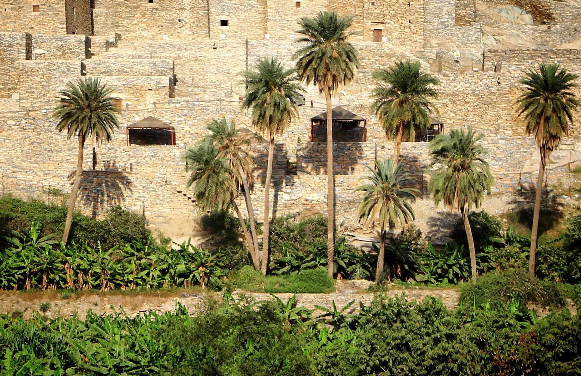 قرية ذي العين الأثرية في السعودية