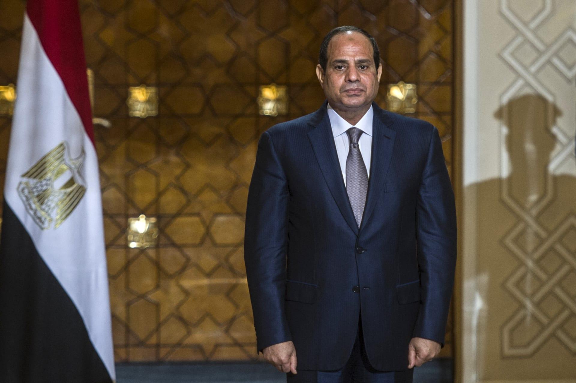 """السيسي يلتقي معصوم ورئيسي شركتين للصناعات الجوية والبحرية ويبرز دور الأزهر بمحاربة """"داعش"""""""