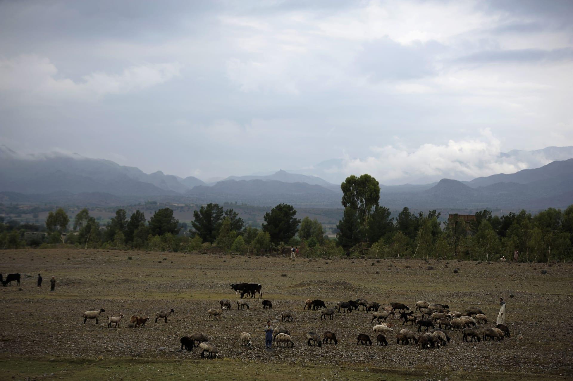 مقتل صحفي في شبكة BBC إثر حادثة إطلاق نار بأفغانستان
