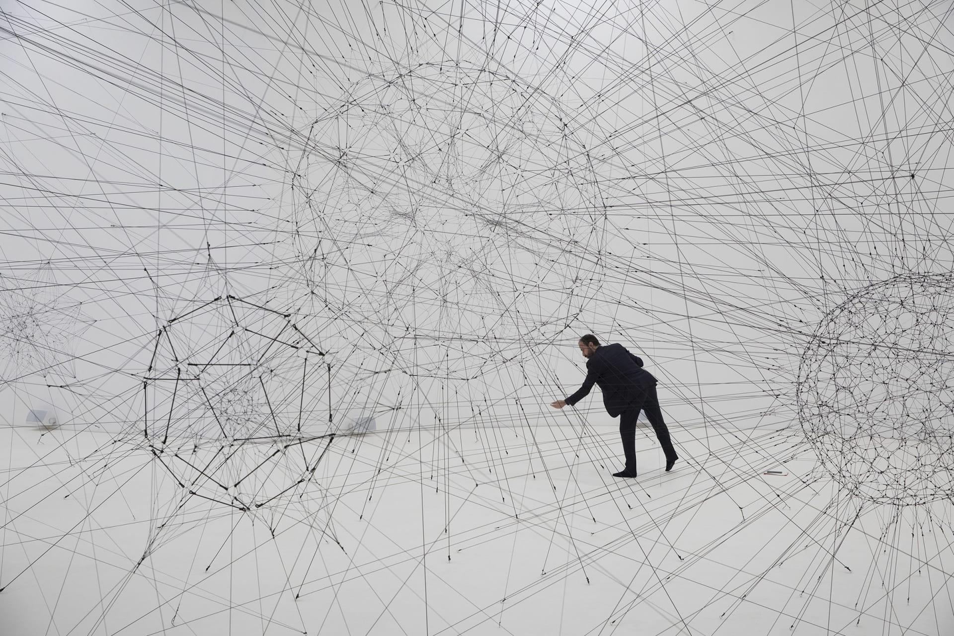 في متحف فرنسي.. شبكات عنكبوت عملاقة تملأ المكان