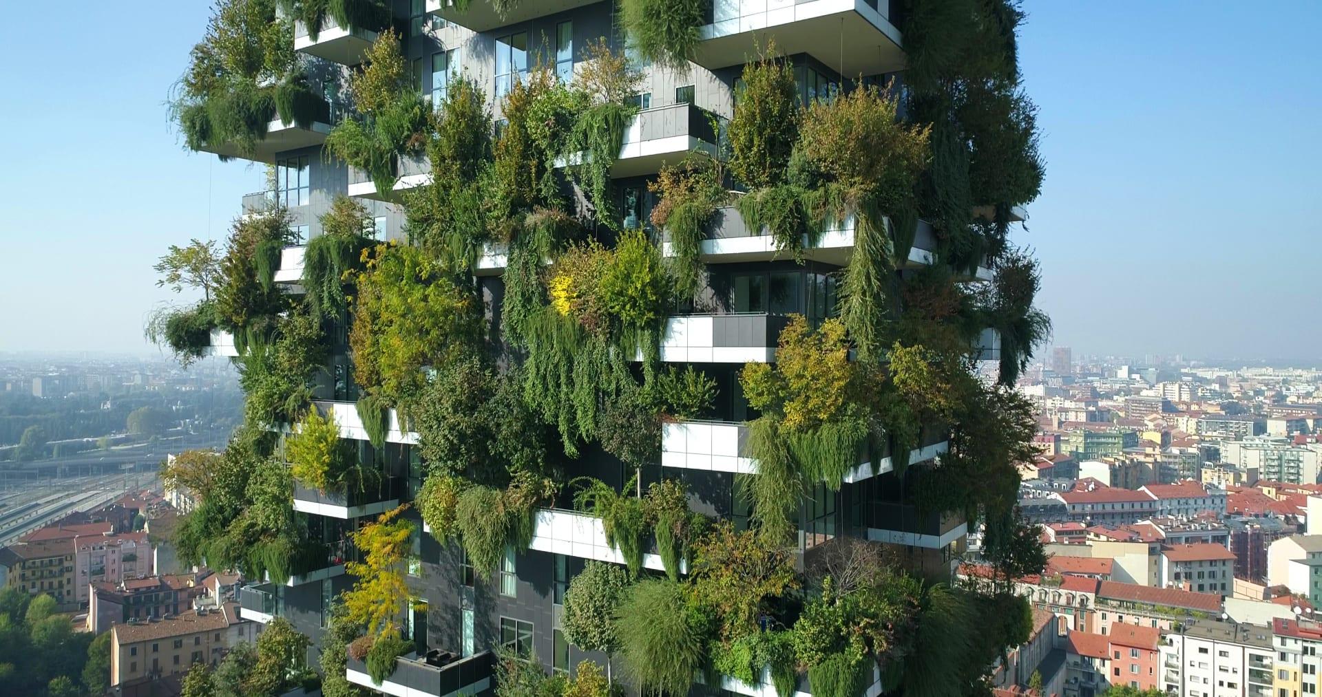 """هل ستجتاح هذه """"الغابات العمودية"""" العالم قريباً؟"""